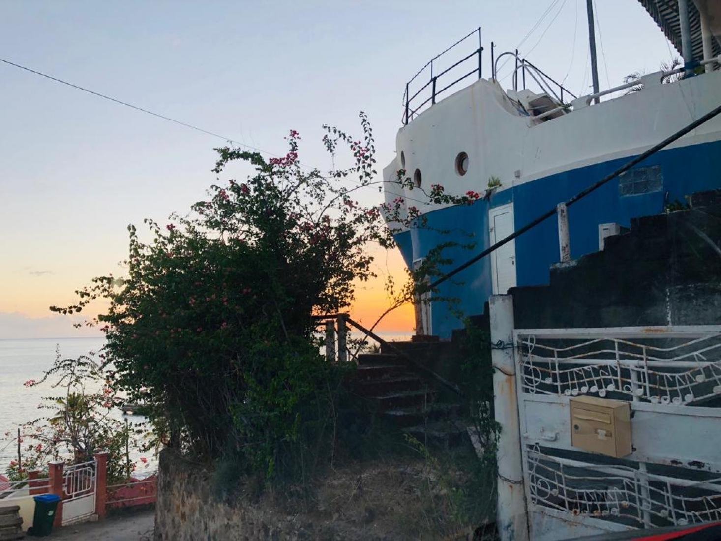 Torgileo de près Bellefontaine Martinique